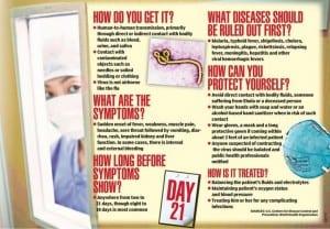 Ebola 101