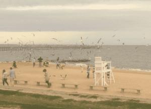Galv Bay
